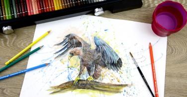 87 Gambar Lukisan Elang Pakai Pensil